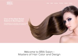 BRIA Salon - Website