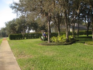 Landscape Design Longwood Florida