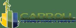 carroll consultancy