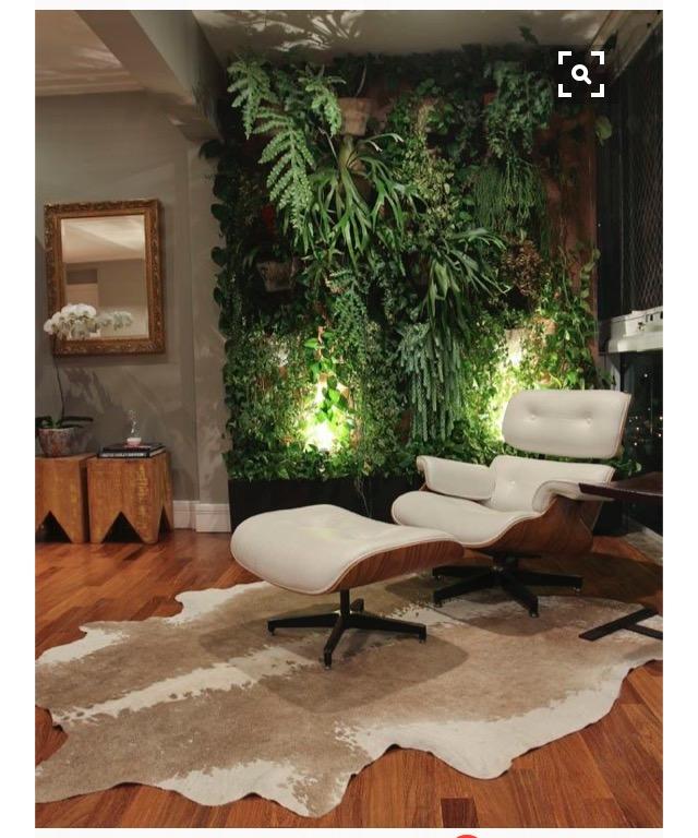 tendencia-plantas-dentro-de-casa-dicas-val-fernandes-site-mauchacoelho-12