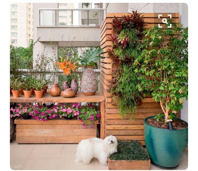 tendencia-plantas-dentro-de-casa-dicas-val-fernandes-site-mauchacoelho-3