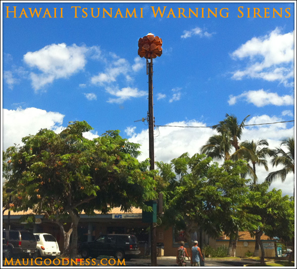Maui Tsunami Warning System Maui Goodness