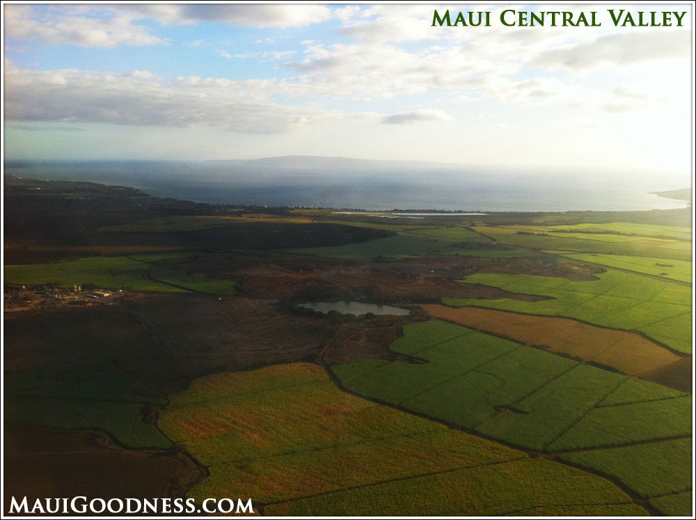 Maui's Central Valley - Green, but for how long?