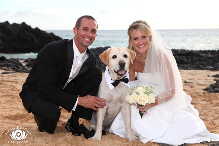Maui Wedding with a Dog