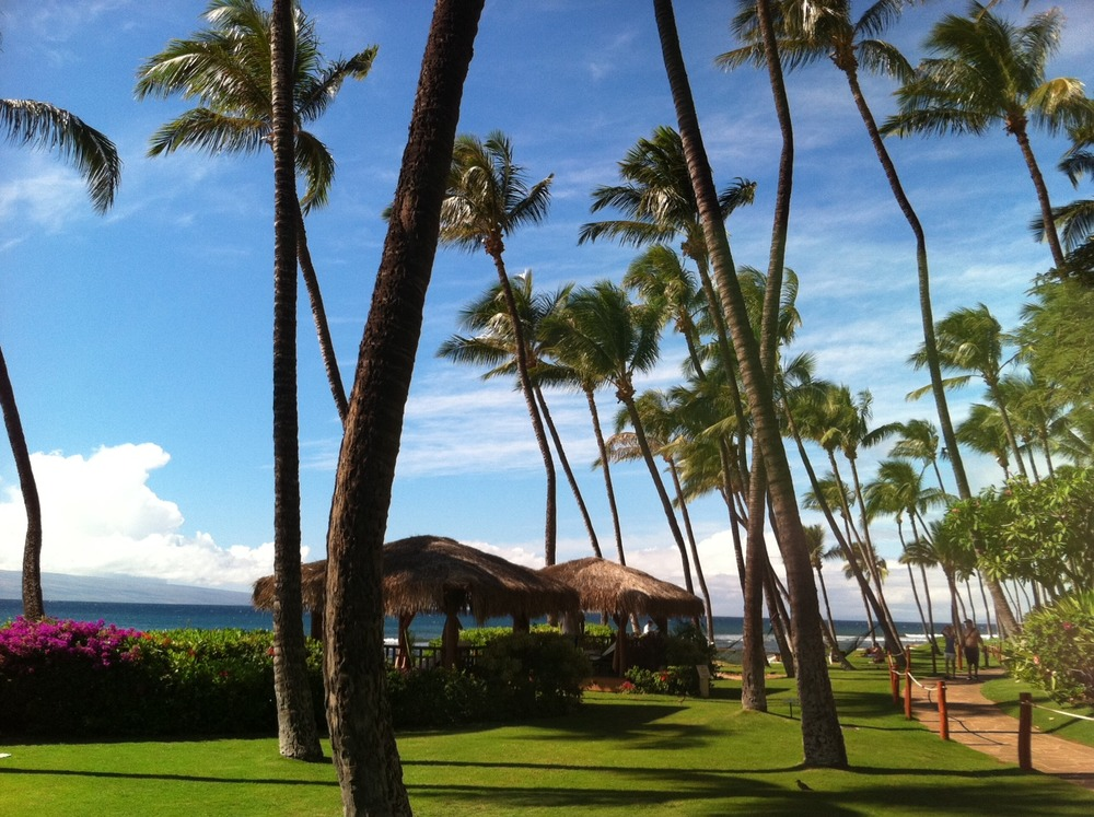 Lucky in Kaanapali