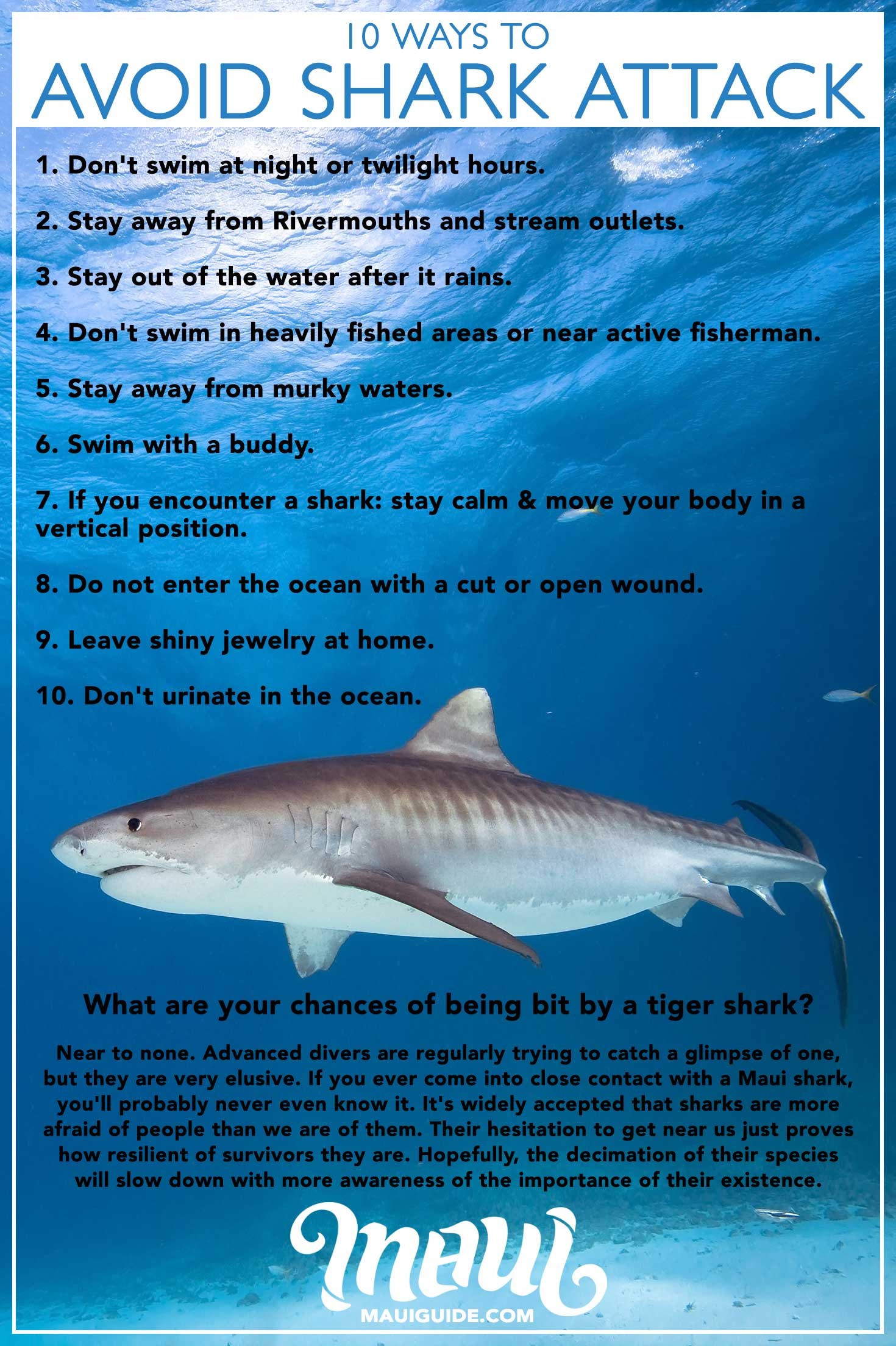 hight resolution of how to avoid a shark attack