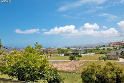 Wailuku Home Sold: 114 Nakoa Dr, Maui, Hawaii