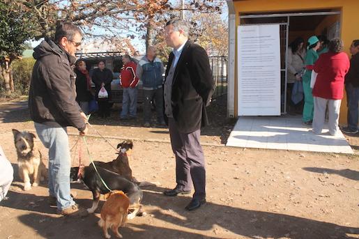Alcalde de Linares vio avance del plan gratis de esterilización para mascotas