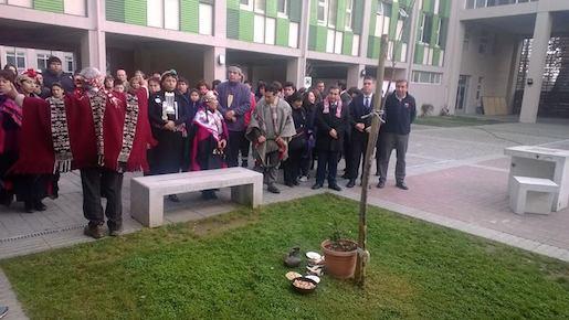 Más de 60 estudiantes de Talca son favorecidos  con Becas Indígenas