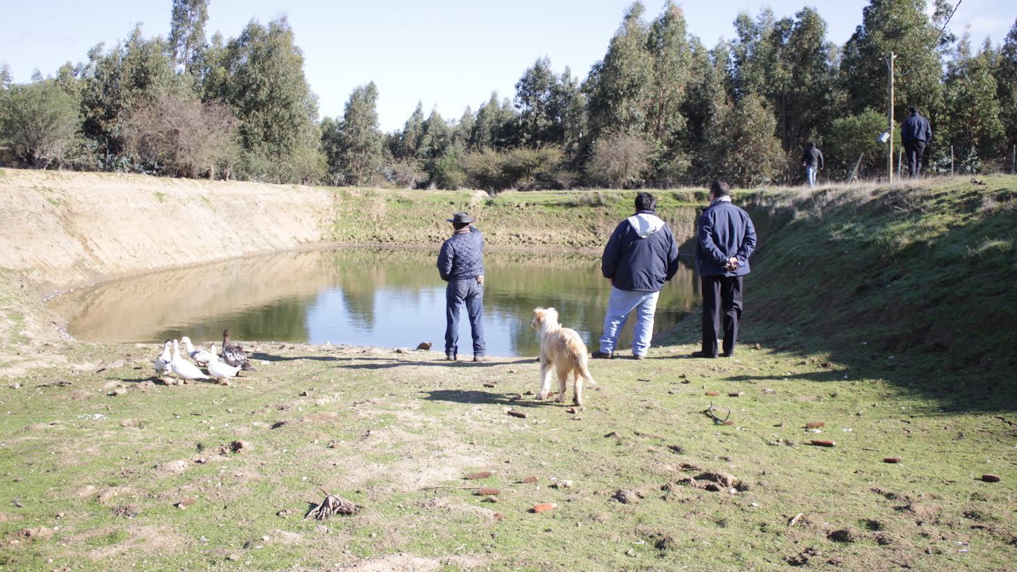 Agricultor de Los Majuelos construye tranque para garantizar agua para cultivos y animales