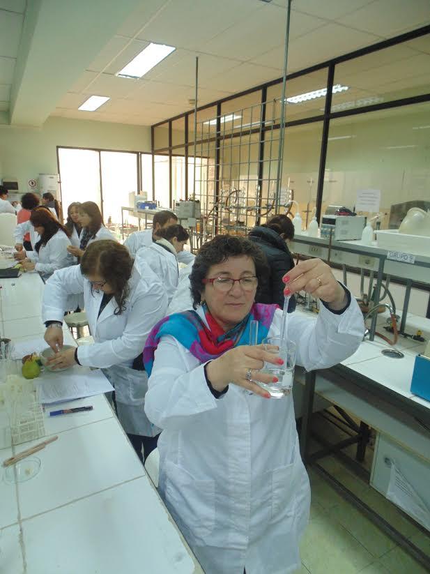 UTALCA perfecciona a profesores de ciencias en metodologías de enseñanza