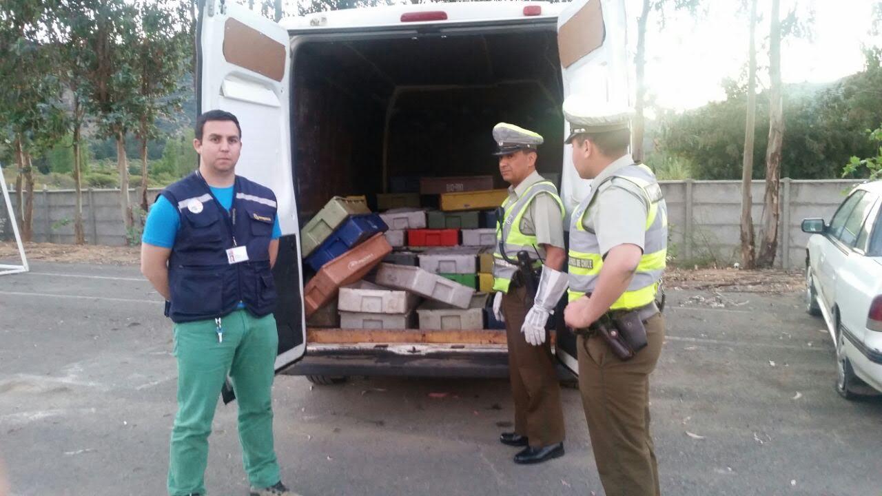 Sernapesca incauta más de una tonelada de merluza común en ruta de Constitución a Talca