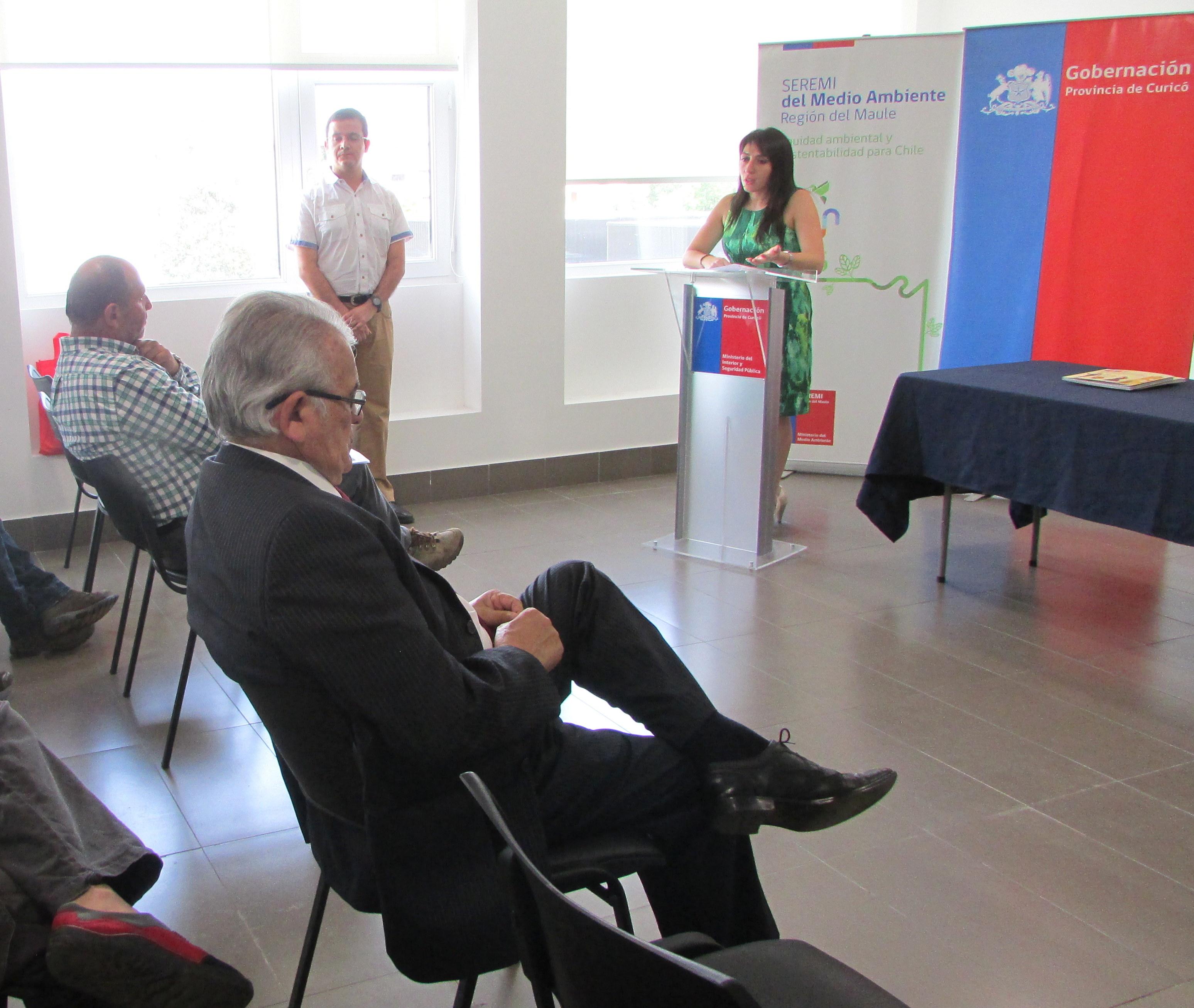 Presentarán proyecto de recambio de calefactores para descontaminar el Valle Central de Curicó