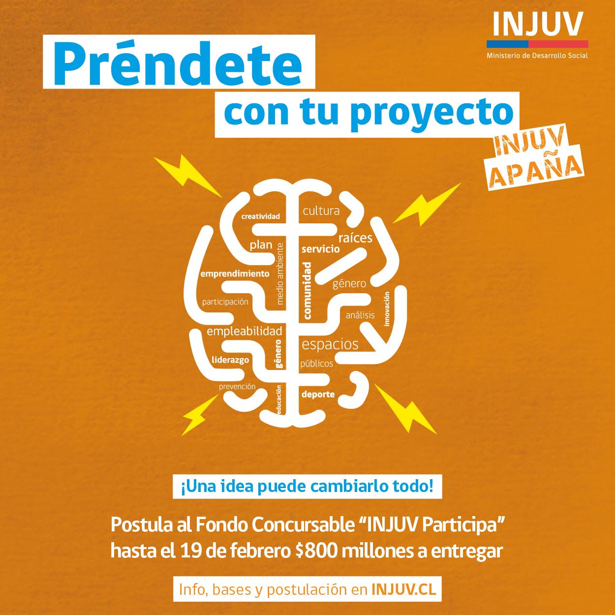 #Participa2017: INJUV lanza fondo concursable para financiar iniciativas juveniles