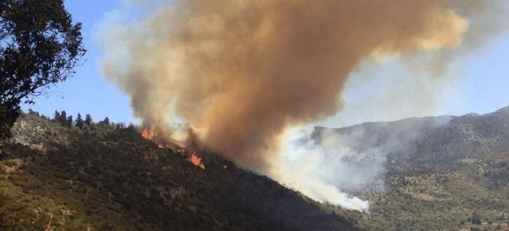 Nuevo balance de incendios forestales: 50 controlados y 6 siguen en combate en el país