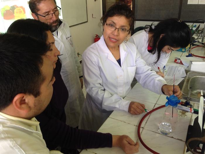 Académicas UTalca buscan incentivar participación femenina en ciencias