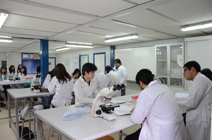 Amantes de la biología y las matemáticas tendrán su espacio en el verano