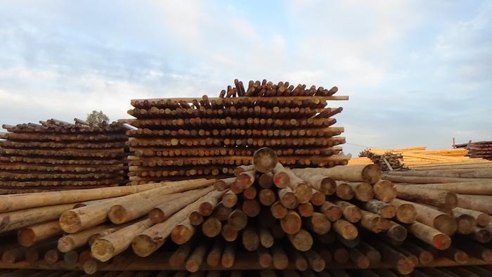 Reponen cercos de madera dañados por incendios en la Región del Maule