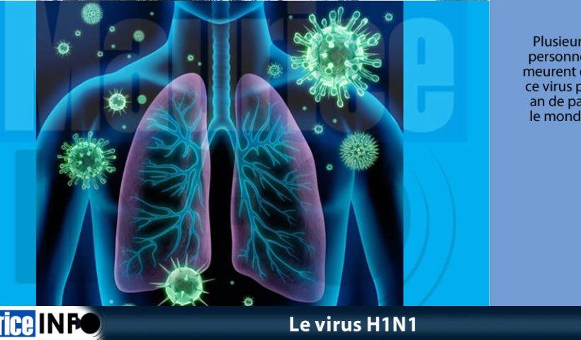 Le virus H1N1