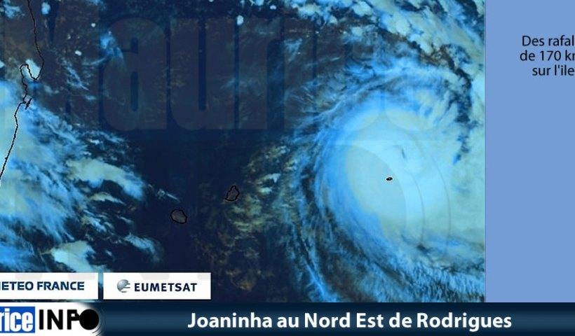 Joaninha au Nord Est de Rodrigues