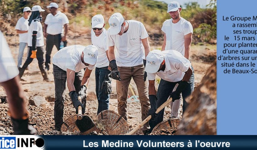 Les Medine Volunteers à l'oeuvre