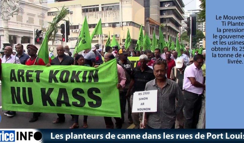 Les planteurs de canne dans les rues de Port Louis