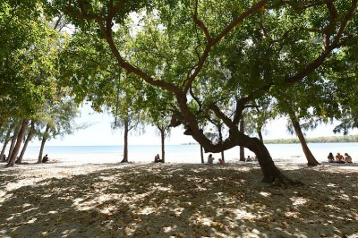 VT-Beach-low