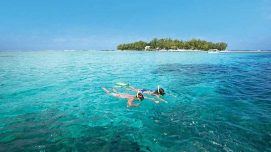 Ile des deux cocos in Mauritius. Tours available daily. Blue bay marine park. Lux resort