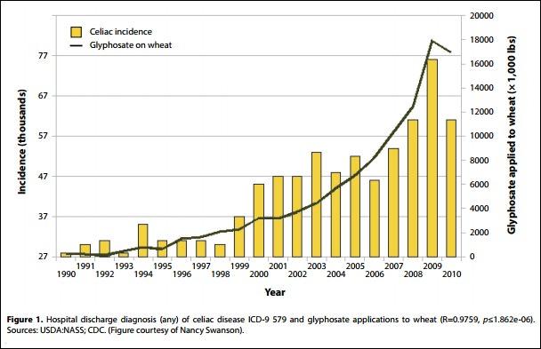 celiac-incidence-as-a-factor-of-glyphosate-application-to-wheat