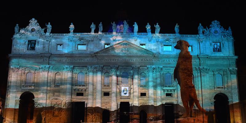 (la grande scimmia in Vaticano)
