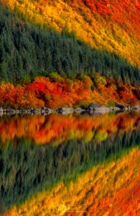 ©-Norvegia-viaggio-fotografico-isole-lofoten