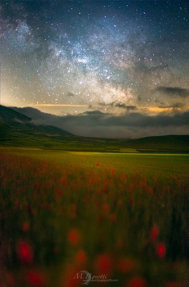 ©--Fairytale-Night