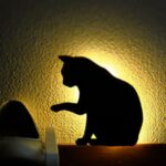Uonlytech Veilleuse LED Applique Murale avec Capteur Sonore Sans Fil Lampe de Nuit Chat Noir pour Halloween Kids Living Room (1pcs)