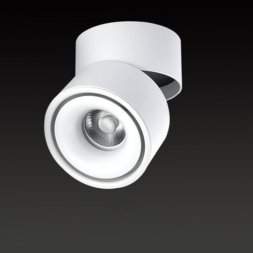Vinteen Plafonnier Pliant Monté Revolving Downlight LED Plafonnier Salon Suspendu Plafond Projecteur Scandinave Convergente Lumière COB Spot Lamp (Color : Warm white light, Taille : 5W)