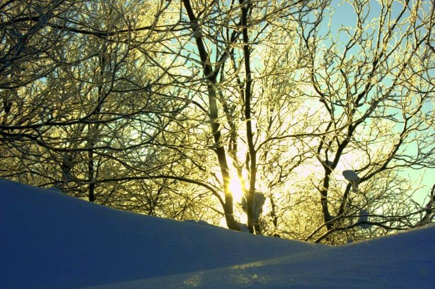 Beautiful snowy morning in murmansk