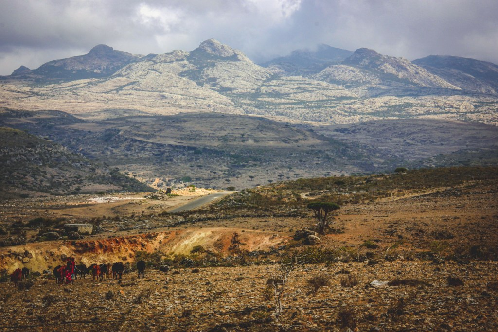 the diksam plateau of socotra island