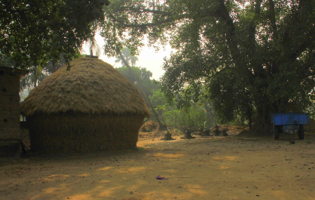 Haystacks in rural Bengal