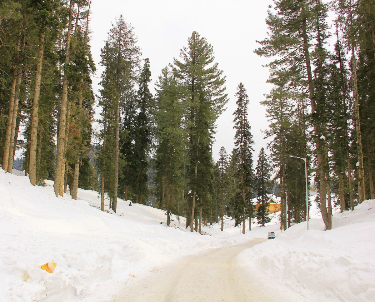 Beautiful landscape of Gulmarg winter
