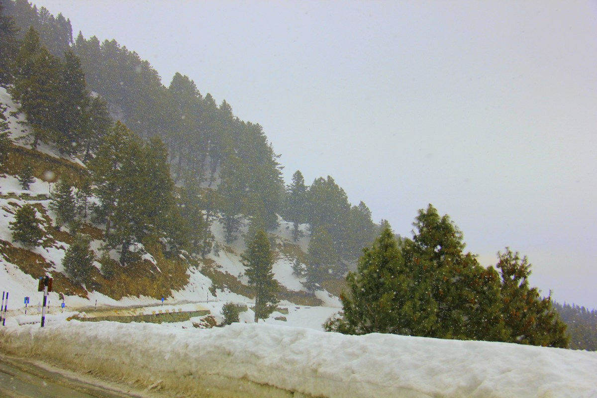 Experience snow and whiteness of Kashmir in winter