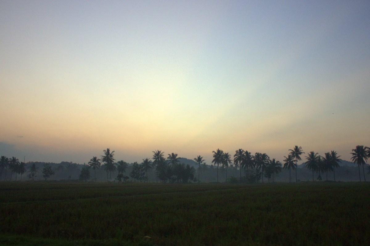 A dawn drive to Borobudur