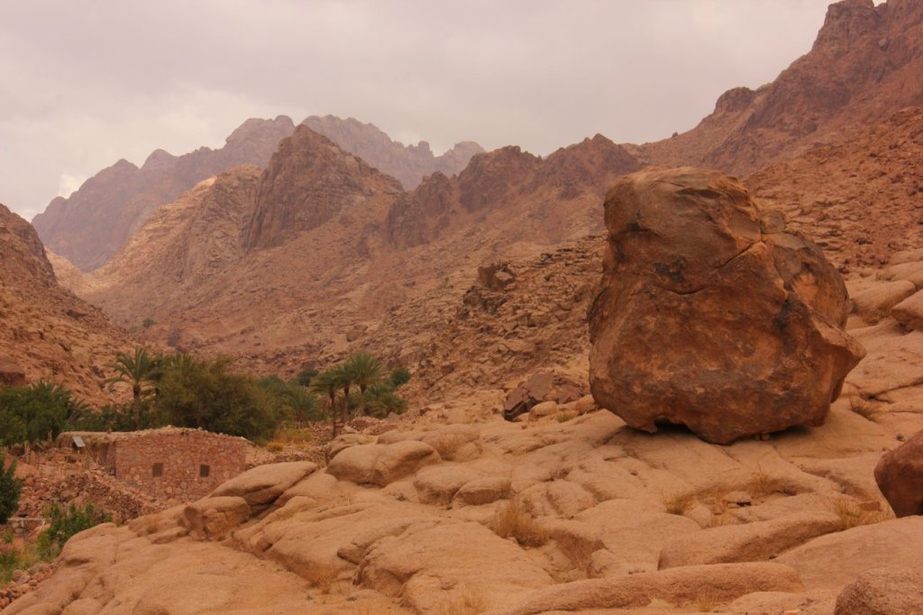 bedouin gardens look like Slivers of green amidst stark mountains of Sinai