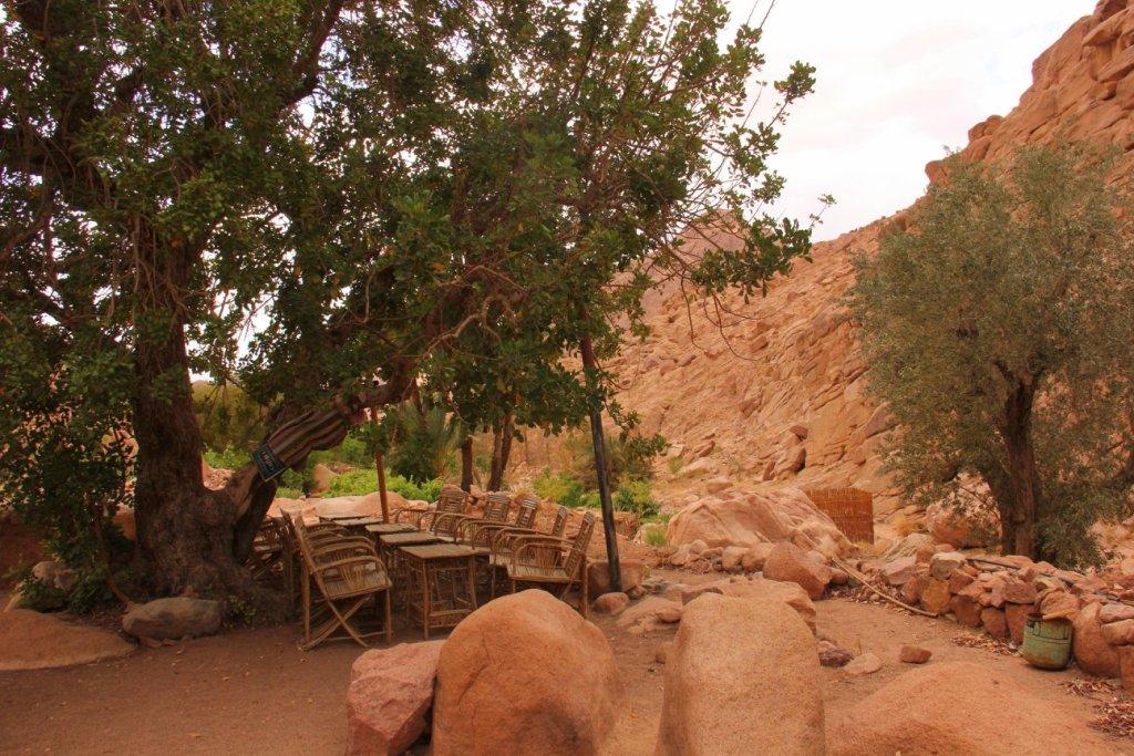 The Bedouin gardens of St.Katherine