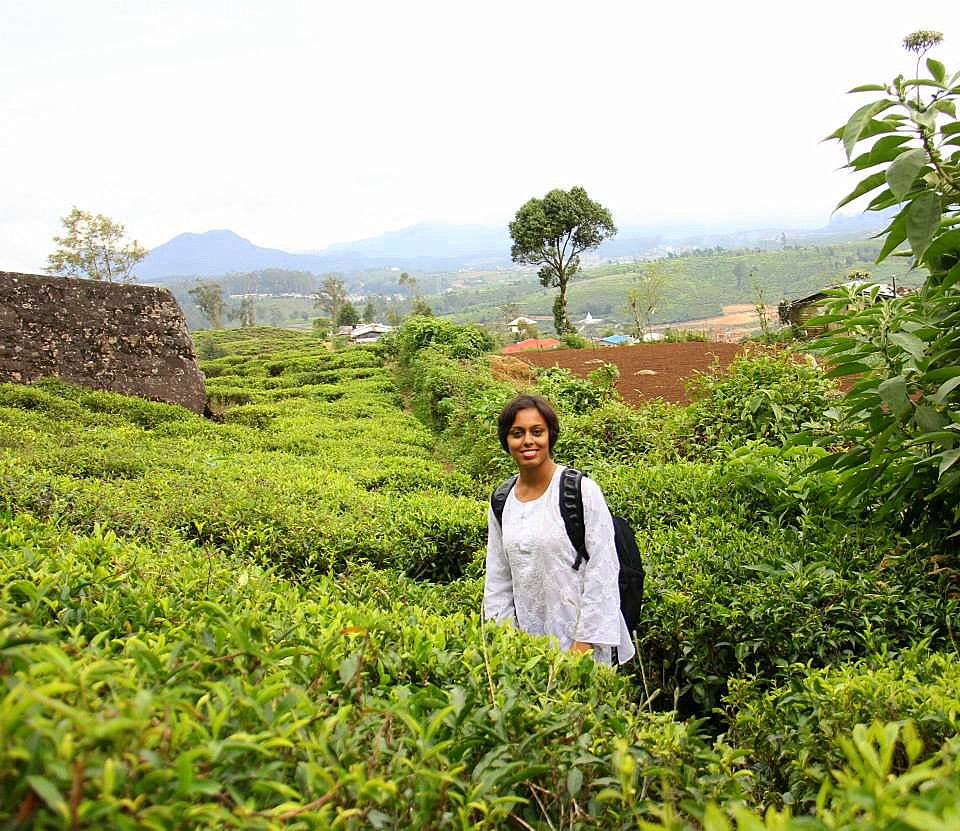nuwara eliya looks like this