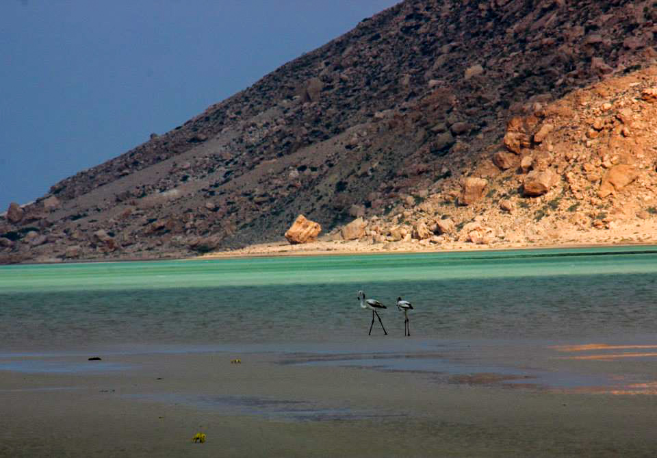 The beautiful colours of Detwa Lagoon