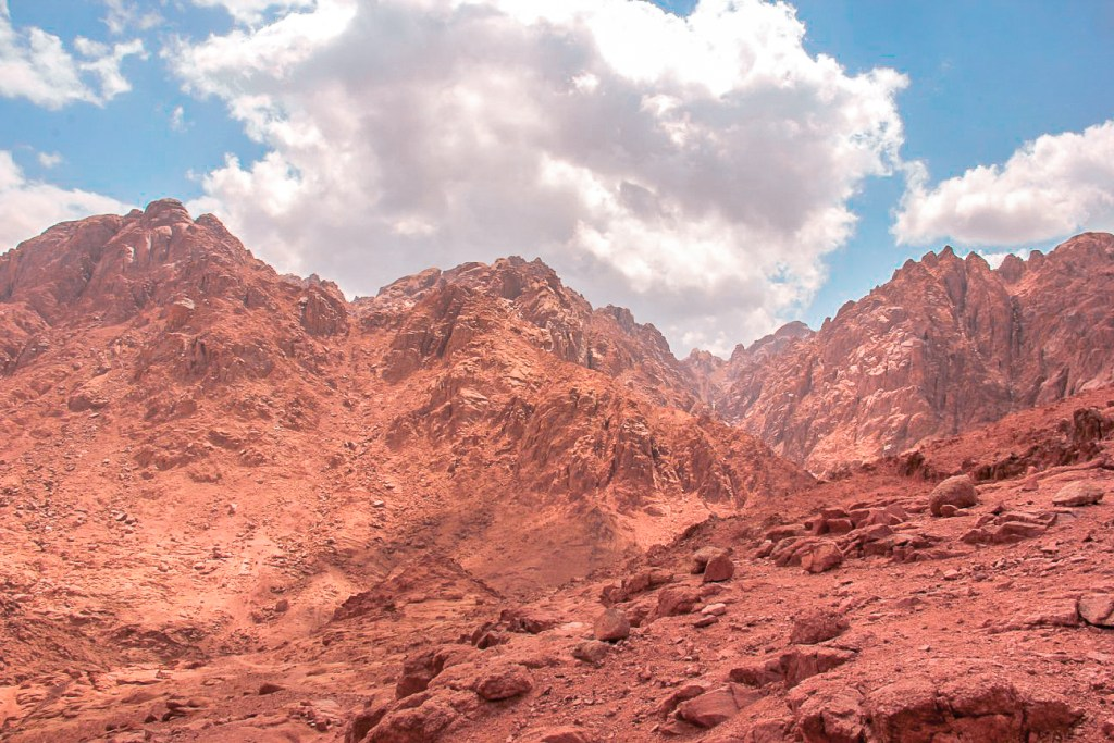 In the harsh environment of South Sinai highlands.