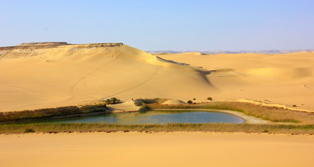 Welcome to Siwa Oasis in egypt