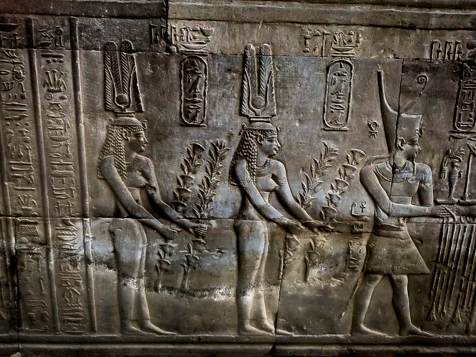 Ptolemy VIII Euergetes II, Backed by his two Wives Cleopatra II and Cleopatra III Precede Hapi. Kom Ombo Temple Egypt