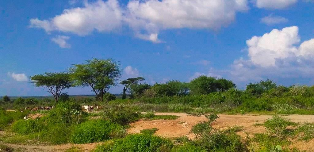 omo valley travel landscape