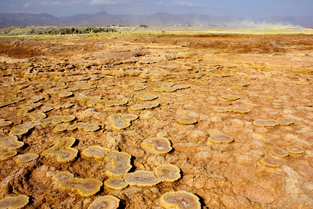 Broad fungus-like mineral deposits in the Danakil Depression.