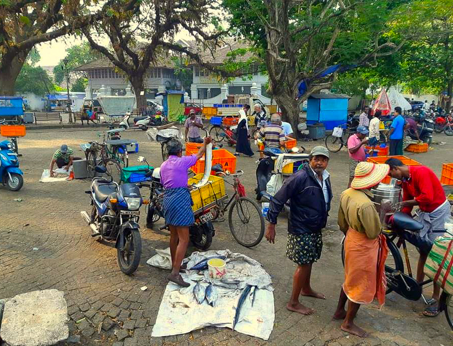 A scene from a fish market in Cochin during my Kerala holiday